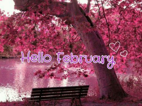 hello february1