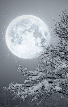 sn0w moon